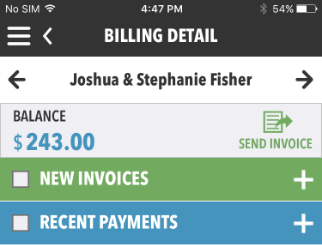 Tap + to add new invoice or payment