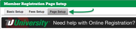 Click Page Setup tab