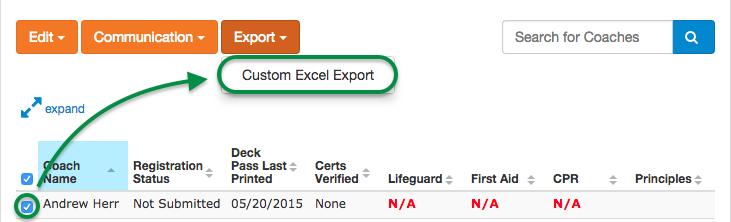 Custom Excel Export menu