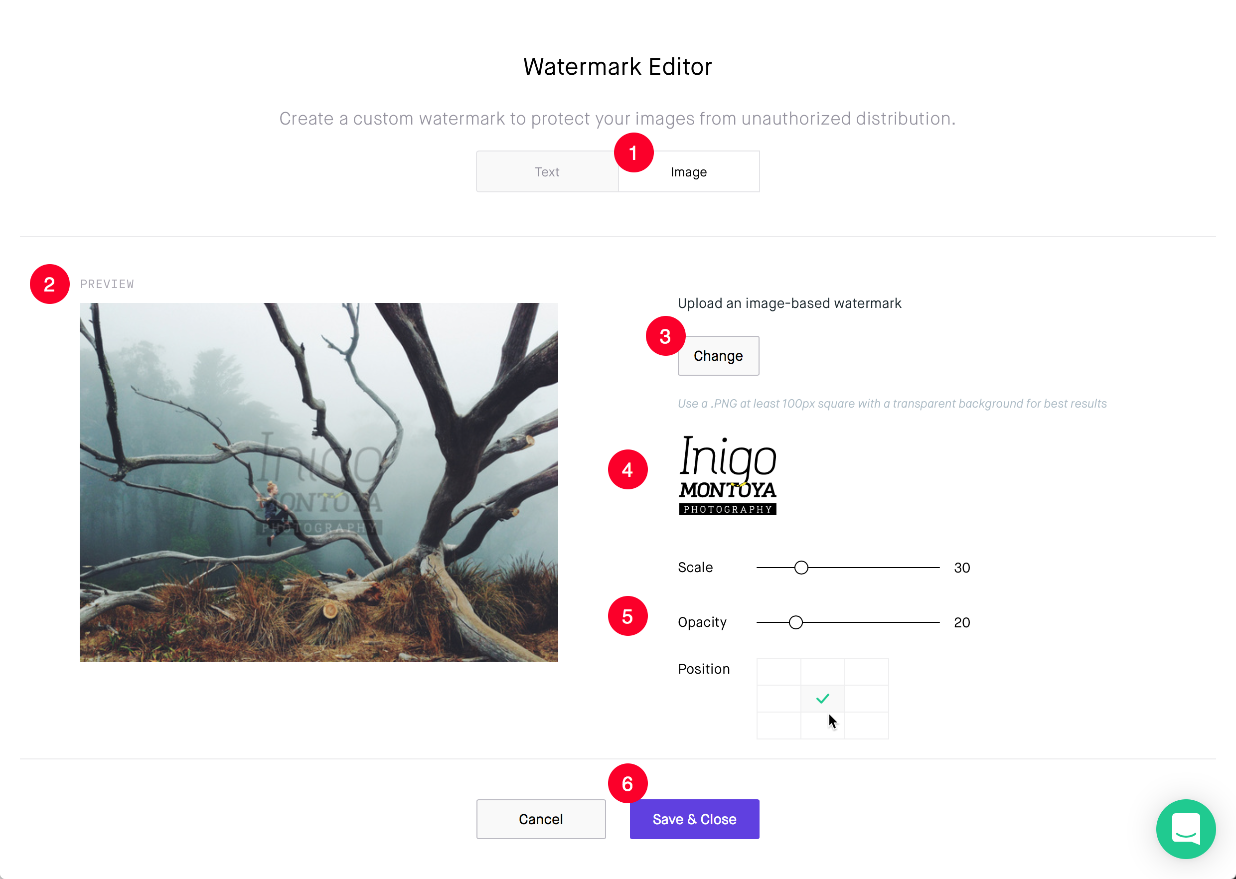 The watermark editor allows you to add your logo graphic and scale and set the opacity over an image