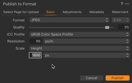 Basic Settings for images being published to Gallery Pages