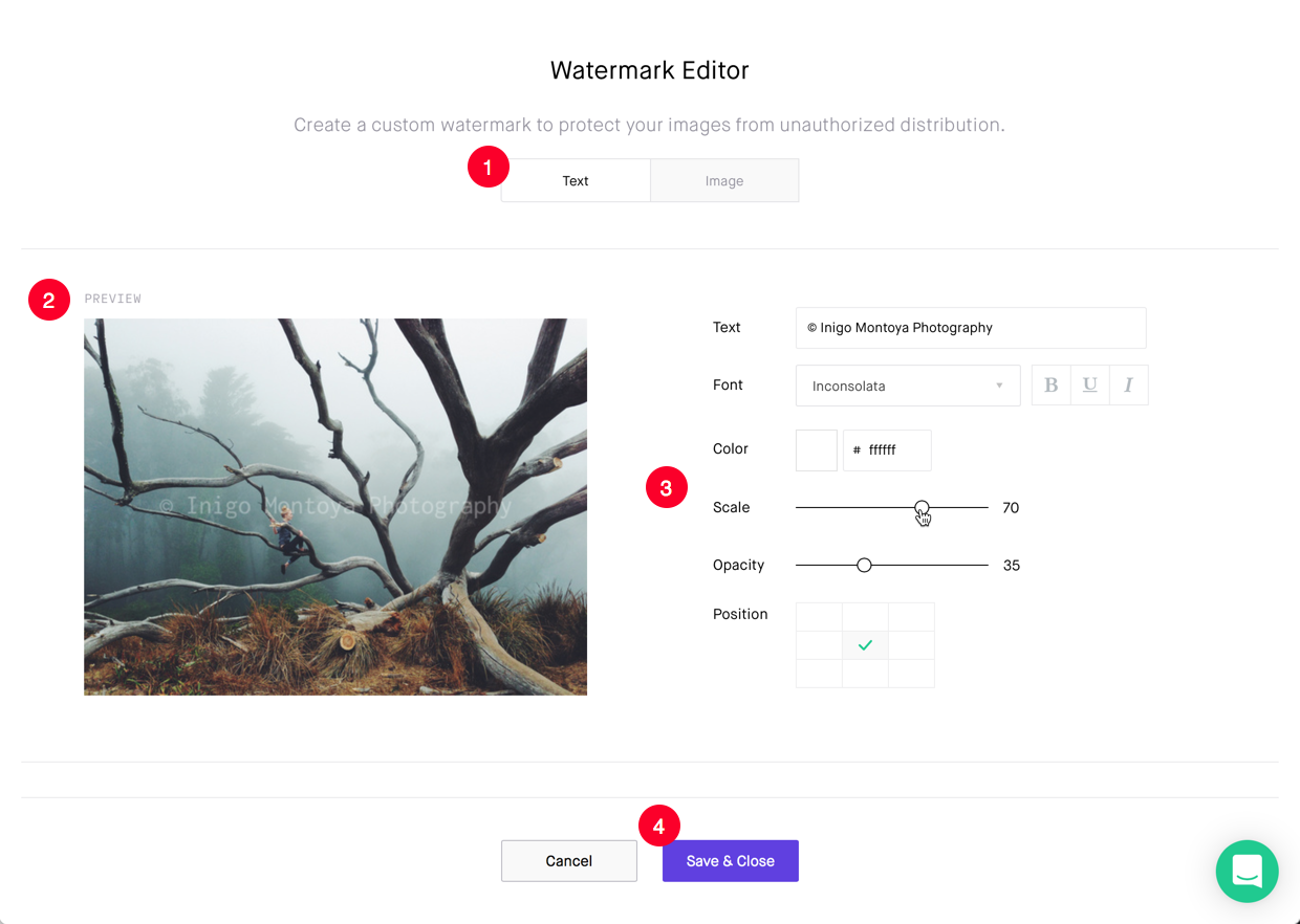 The watermark editor allows you to use text over your images to protect them.