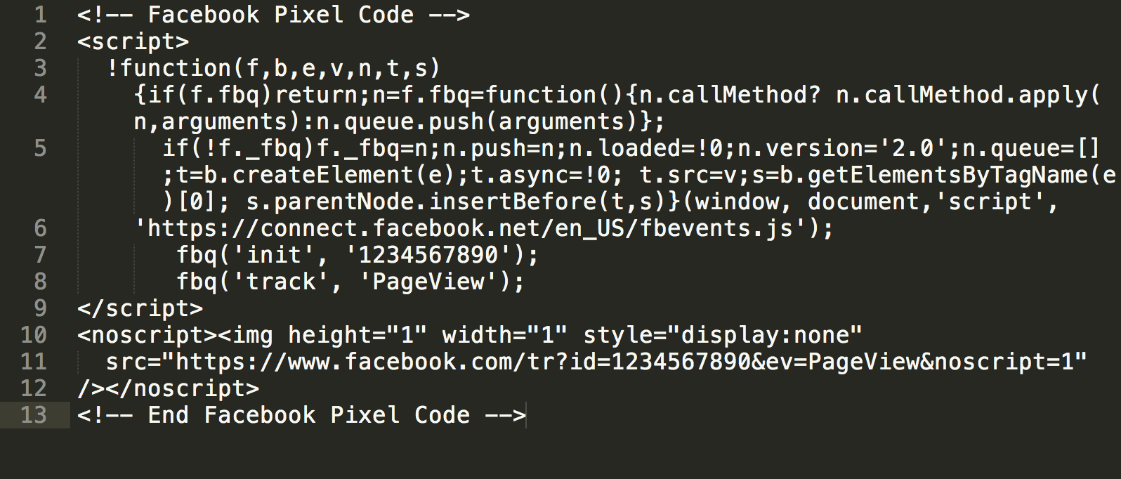 Facebook Pixel Code example within a text editor window