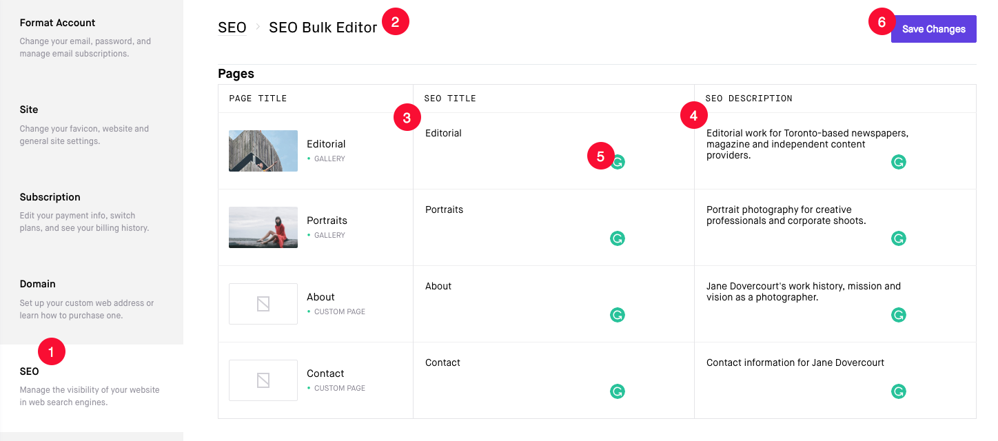 SEO Bulk Editor options for adding Page Title and Page Description easily
