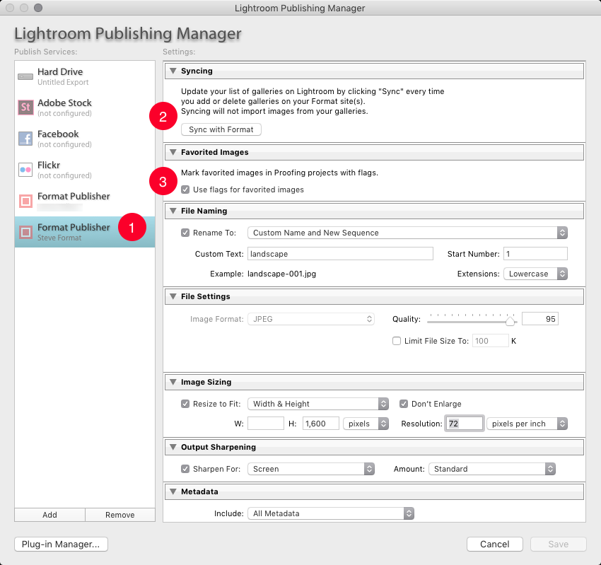 Format Publisher settings for Syncing with Format