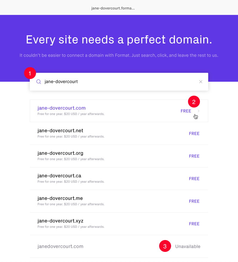Search tool for finding the perfect domain name and showing results