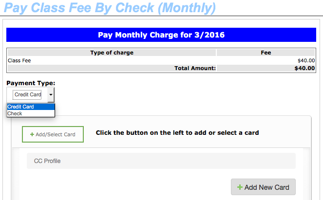 Payment type selection